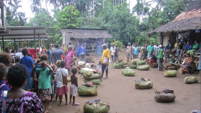 ANTH3014/6065 Eco-cultural tourism in Papua New Guinea: an applied intensive