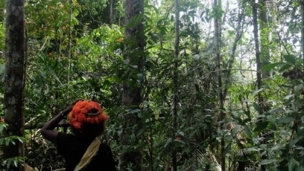 The Known and the Unknown: Sensing Others in the Batek's Forest, Malaysia