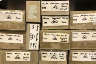 Archaeology Collections